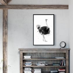 Framed 24 x 36 - Proud ostrich