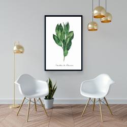 Framed 24 x 36 -  bay leaves bundle - fr