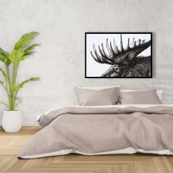 Framed 24 x 36 - Moose plume
