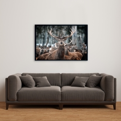 Framed 24 x 36 - Stags