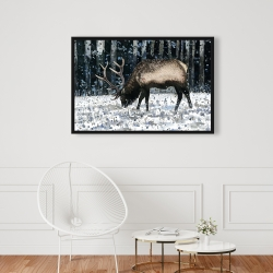 Framed 24 x 36 - Caribou in the winter forest