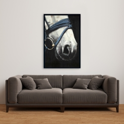 Framed 24 x 36 - Horse with harness