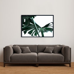 Framed 24 x 36 - Monstera deliciosa