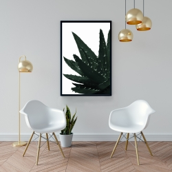 Framed 24 x 36 - Aloe plant