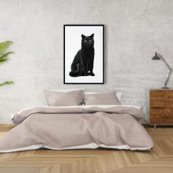 Framed 24 x 36 - Black cat