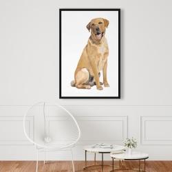 Framed 24 x 36 - Labrador retriever