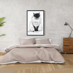 Framed 24 x 36 - Blue eyes fluffy siamese cat
