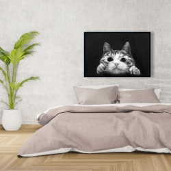 Framed 24 x 36 - Curious cat