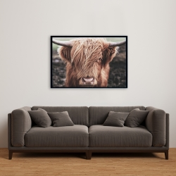 Framed 24 x 36 - Desaturated highland cow