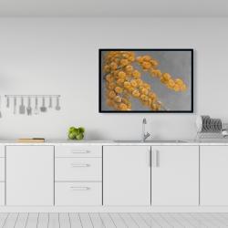 Framed 24 x 36 - Golden wattle plant