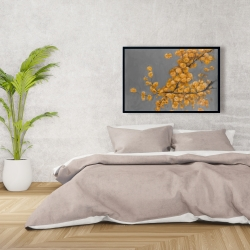 Framed 24 x 36 - Golden wattle plant with pugg ball flowers