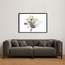 Framed 24 x 36 - Softness