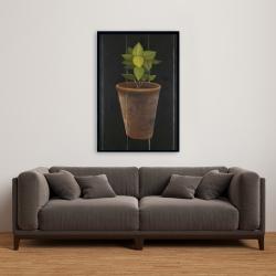 Framed 24 x 36 - Plant of bay leaves