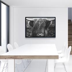 Framed 24 x 36 - Monochrome portrait highland cow