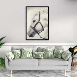 Framed 24 x 36 - Darius the white horse