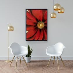 Framed 24 x 36 - Red daisy