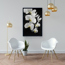 Framed 24 x 36 - Beautiful orchids