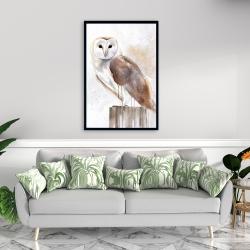 Framed 24 x 36 - Barn owl