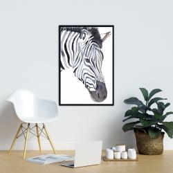 Framed 24 x 36 - Zebra