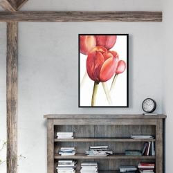 Framed 24 x 36 - Blossoming tulips closeup