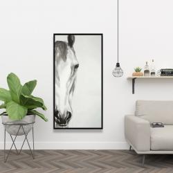 Framed 24 x 48 - Black & white horse face