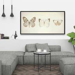 Framed 24 x 48 - Sepia butterflies