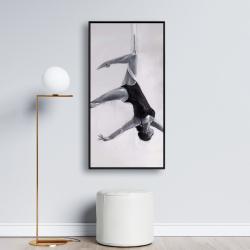 Framed 24 x 48 - Dancer on aerial silks