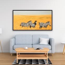 Framed 24 x 48 - Herd of zebra