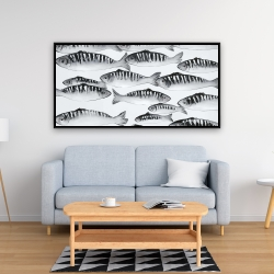 Framed 24 x 48 - Gray shoal of fish