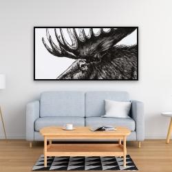 Framed 24 x 48 - Moose plume