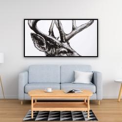 Framed 24 x 48 - Roe deer plume