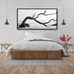 Framed 24 x 48 - Dead tree in the middle of water