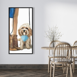 Framed 24 x 48 - Fashionable cavoodle dog