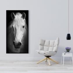 Framed 24 x 48 - Monochrome horse