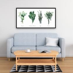 Framed 24 x 48 - Fines herbes
