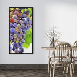 Framed 24 x 48 - Bunch of grapes