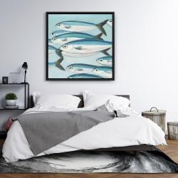 Framed 36 x 36 - Small fish of caesio caerulaurea