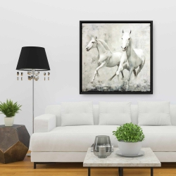 Framed 36 x 36 - Two white horses running