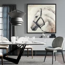 Framed 36 x 36 - Darius the white horse