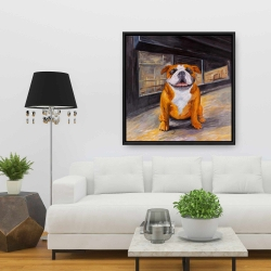 Framed 36 x 36 - Smiling bulldog
