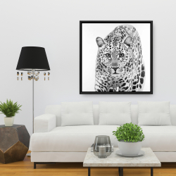 Framed 36 x 36 - Leopard ready to attack