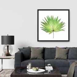 Framed 36 x 36 - Petticoat palm