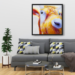 Framed 36 x 36 - Closeup of a colorful country cow