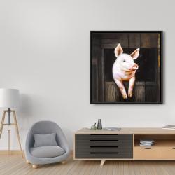 Framed 36 x 36 - Smiling pig