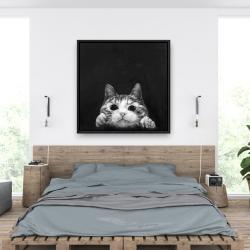 Framed 36 x 36 - Curious cat