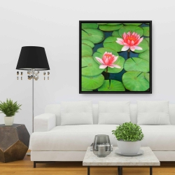 Framed 36 x 36 - Lotus flowers in a swamp
