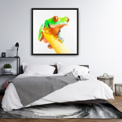 Framed 36 x 36 - Curious red-eyed frog