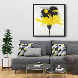 Framed 36 x 36 - Bumblebee on a dandelion