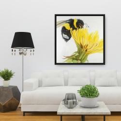 Framed 36 x 36 - Little bumblebee on a dandelion