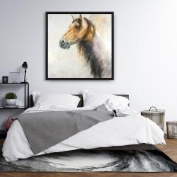 Framed 36 x 36 - Wild horse